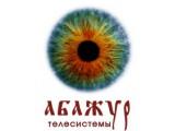 Логотип Абажур-Сибирский Центр Видеонаблюдения, торгово-монтажная компания